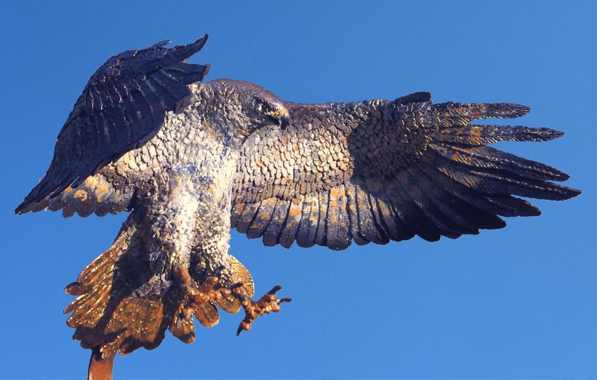 Decatur Hawks Indiana